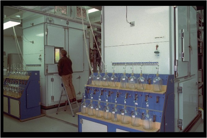 Labeling facility